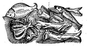 rumpolt stockfish